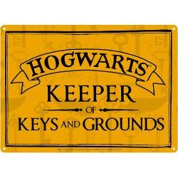 Chapa Metálica Pequeña Harry Potter Keeper