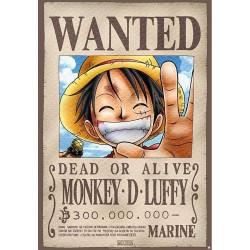 Placa Metálica One Piece Luffy 29x38