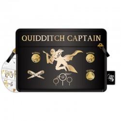 Portatodo HP Quidditch